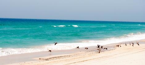 En la carretera que va de RAK a Khasab encontramos un buen numero de preciosas playas